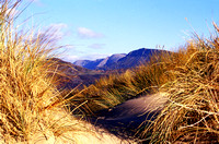 Barmouth Sand Dunes